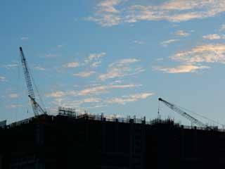 crane_10.jpg