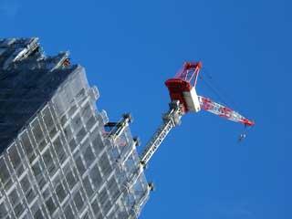 crane_12.jpg
