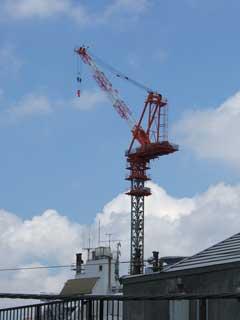 crane_20.jpg