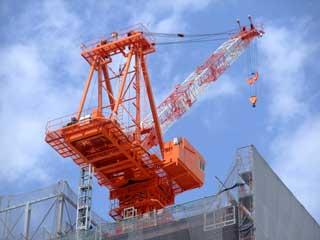 crane_30.jpg