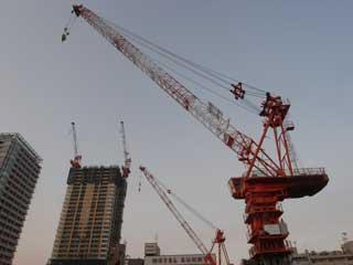 crane_g02.jpg