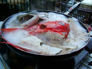 fish_03.jpg