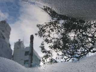 reflect_18.jpg